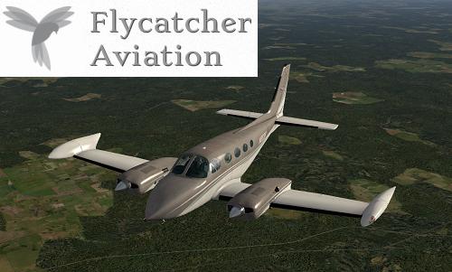 Flycatcher_Ann
