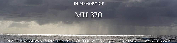 Platinum MH370